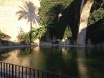 Jardines de la Catedral Mallorca