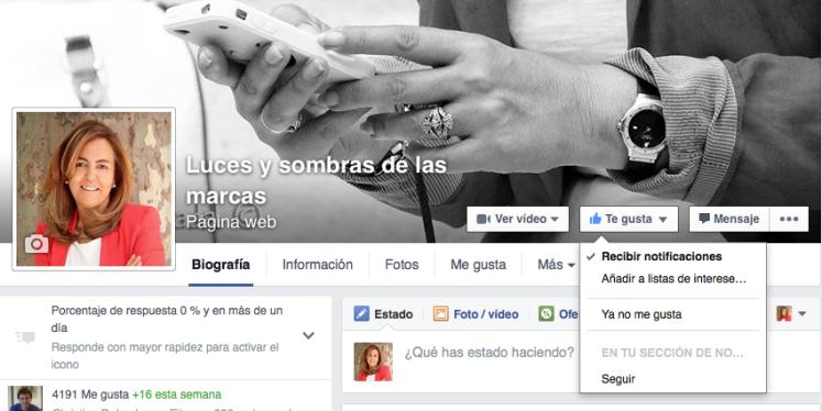 como ver una pagina de Facebook