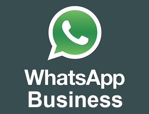WhtasApp Business